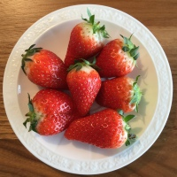 Früchte und Gemüse im Juli